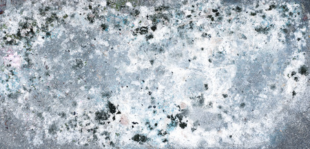 black mold: Black mold buildup in  concrete wall Stock Photo