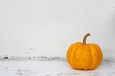 dull: pumpkin on dull white background