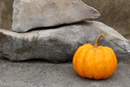 Pumpkin in a nature rock background