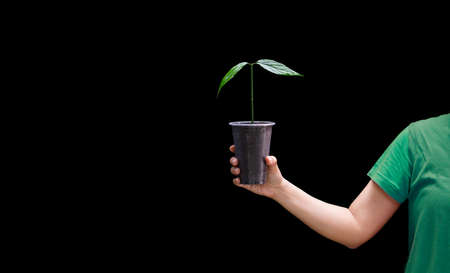 A woman holding a tree sapling in a dark background