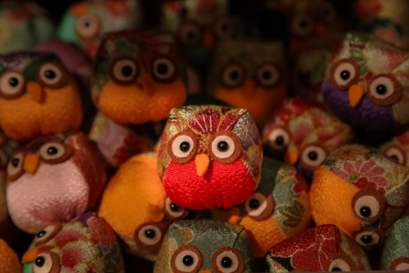 curiously: Standing out from the crowd, an outstanding toy owl is photographed as it curiously looks at the world.