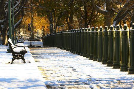 A Washington D.C. park bench. Imagens