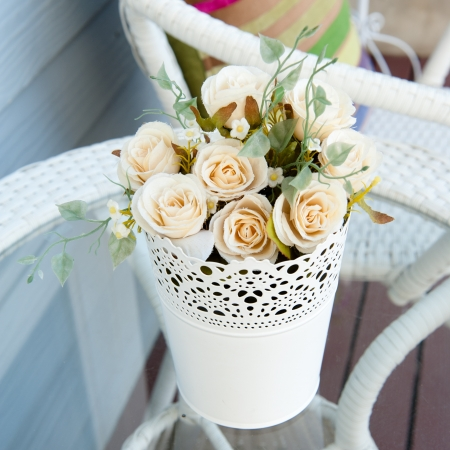 primulas: colorful  flowers in pots