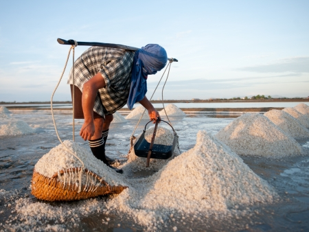 salt water: Worker at salt extraction in morning Stock Photo
