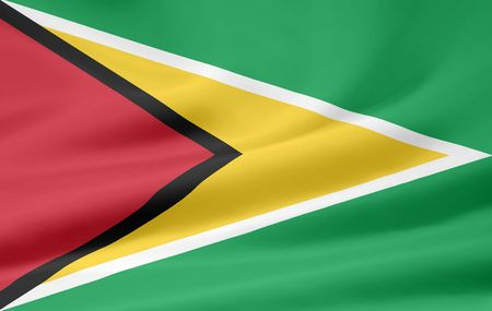 guyanese: Flag of Guyana