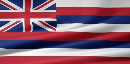 Flag of Hawaii Stock Photo - 7003189