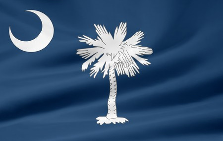 Flag of South Carolina Stock Photo - 7003198