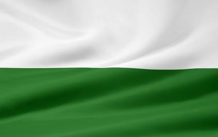Flag of Styria - Austria Stock Photo - 9782692