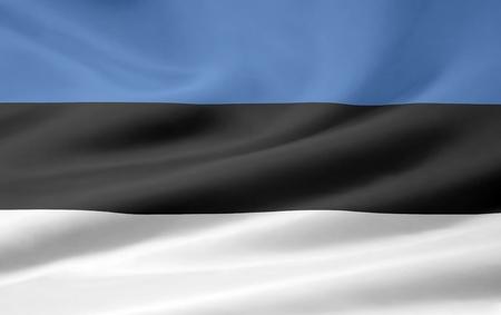 Flag of Estonia Stock Photo - 8639395