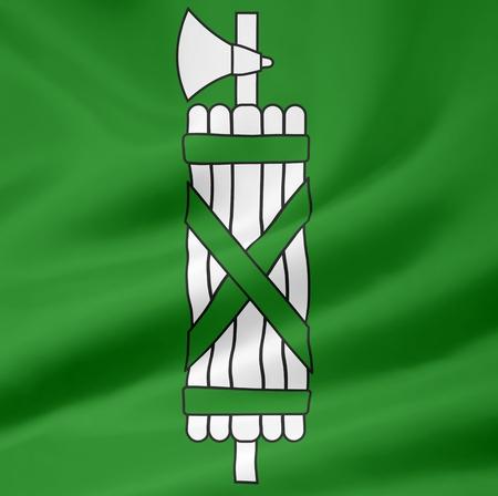 Flag of Canton St. Gallen - Switzerland Stock Photo - 10259435