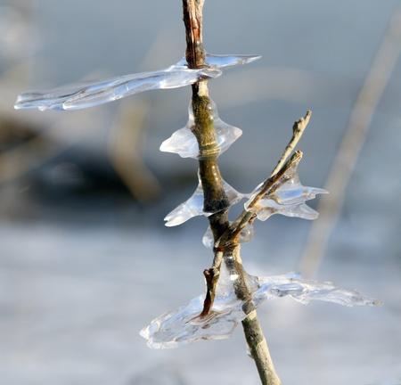 encapsulated: Ice figures Stock Photo