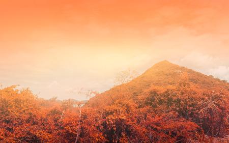 Orange mountains.