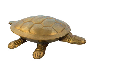 Golden turtle photo