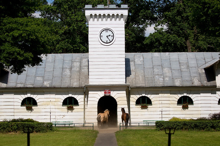 stud: Stable Under the clock in the stud in Janow Podlaski in Poland