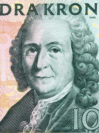 Carl Linnaeus portrait from Swedish money