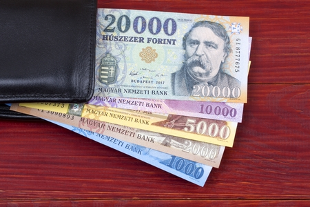 Hungarian money in the black wallet