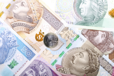 Euro coin on the background of Polish banknotes