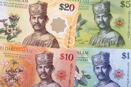 Money from Brunei a business background