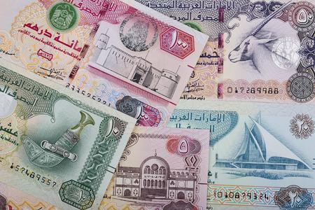 United Arab Emirates Dirham, a business background