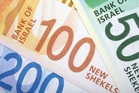 Israeli New Shekels, a business background