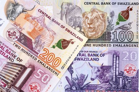 Money from Swaziland, a business background
