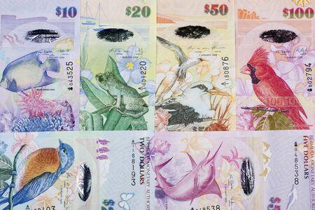 Bermudian dollar a business background