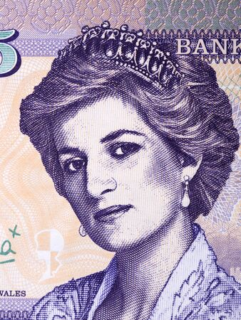 Diana, Princess of Wales a portrait from Welsh collectors money Stock fotó