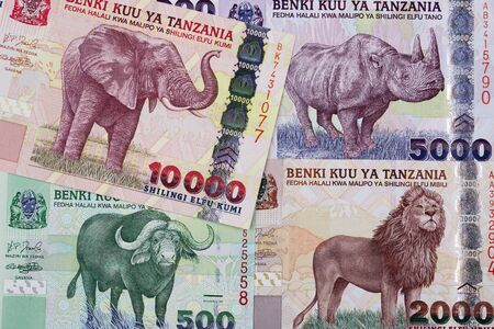 Tanzanian shilling a business background Standard-Bild