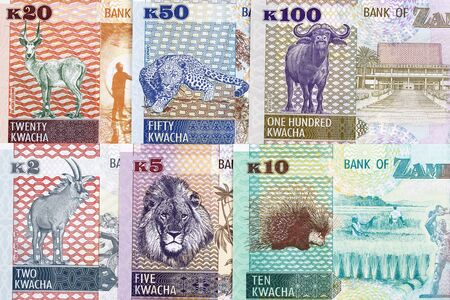 Money from Zambia a business background