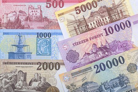 Hungarian money - forint a business background Imagens