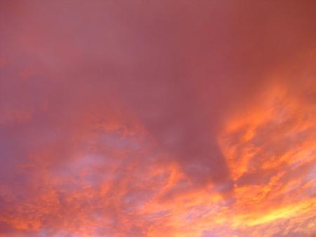 the magic of twilight
