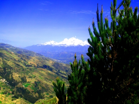 Andean landscape Stock Photo - 16973267