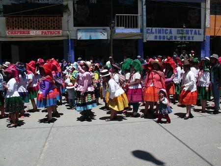 Andean folkloric print