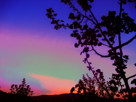 magical colors of dawn