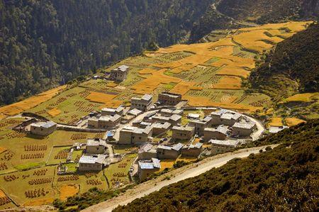 The beauty of Yading Travel photo