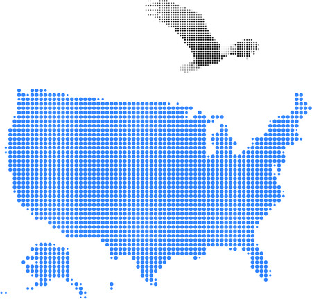 The bald eagle and American map-Pixel series (vector)