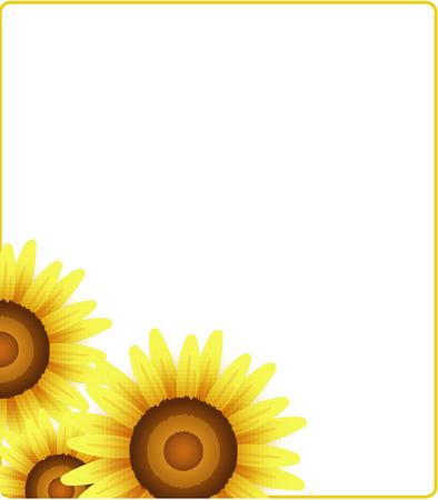 morale: sunflower on white background, Vector