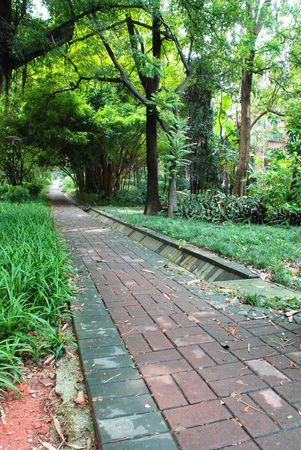 garden path: Path in grass Stock Photo