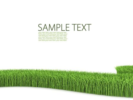 lawn: Grass on white background Stock Photo