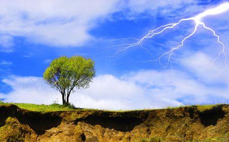 Isolated tree with lightning photo