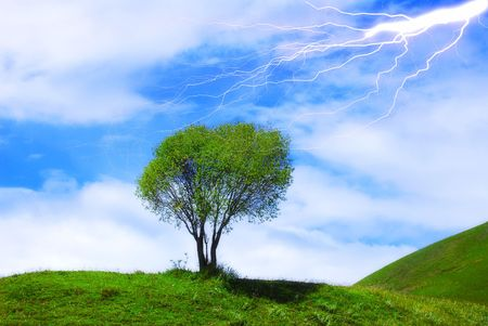 Isolated tree with lightning photo