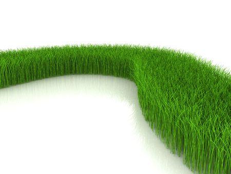 grass on white background Stock Photo - 6058996