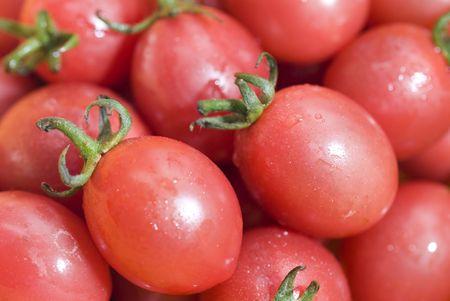 tomato cherry: Tomato Cherry -Micro