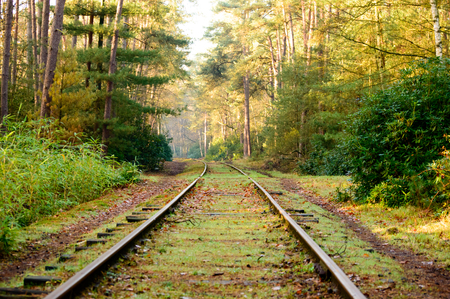 forest railroad: Old mossy railroad tracks curved and extending into the distance in dense hardwood forest with fallen leaves covering surface during autumn