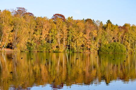 changing seasons: Colorful autumn or fall trees reflected in a tranquil lake on a sunny blue sky day heralding the changing seasons Stock Photo