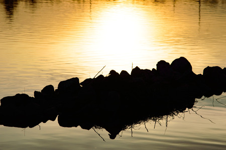 Bright yellow sunset reflected in calm water and back lit rocks with twigs sticking up as an abstract nature background Zdjęcie Seryjne