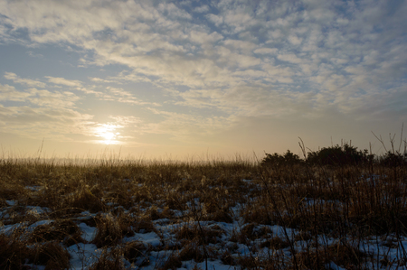 Sun rising on a cold and foggy morning melting the snow and creating drops of water on the brown grass Zdjęcie Seryjne