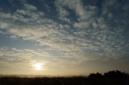 Sun breaking trough clouds coloring the sky and creating a fog layer in the distance over grass plants
