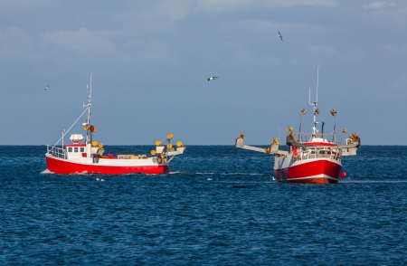 Commercial fishing boats on mackerel fishing in Icelandic waters