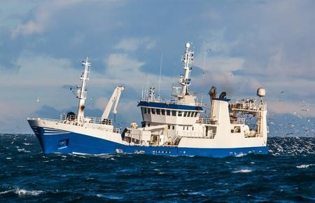Pelagic fishing boat fully loaded with capelin